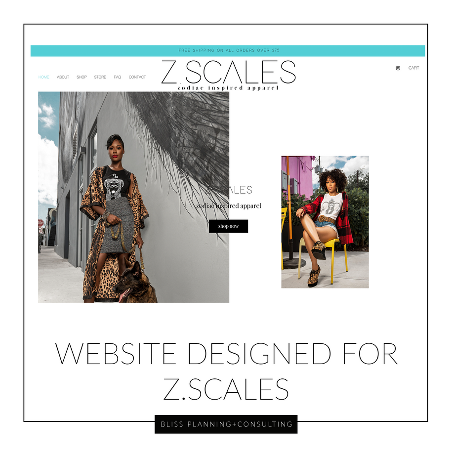 Z.Scales Website Showcase .png