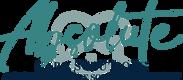 ACS Alternative Logo - Teal.png