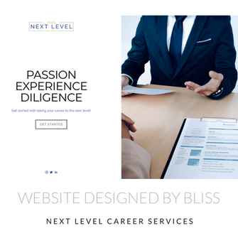 NEXT LEVEL CAREER SERVICES.png