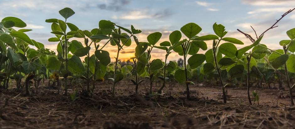 L'ÉVALUATION ENVIRONNEMENTALE EN AGRICULTURE - L'OUTIL AGRIBALYSE® DE L'ADEME