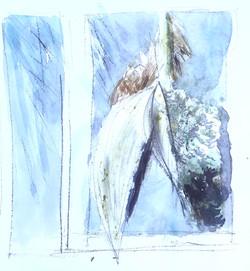 Palm Tree Dream