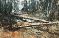 lanscape 8- painted along