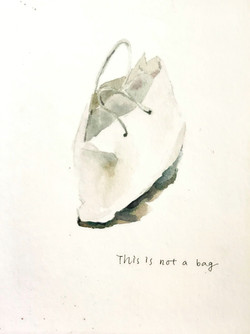 This Is Not A Bag