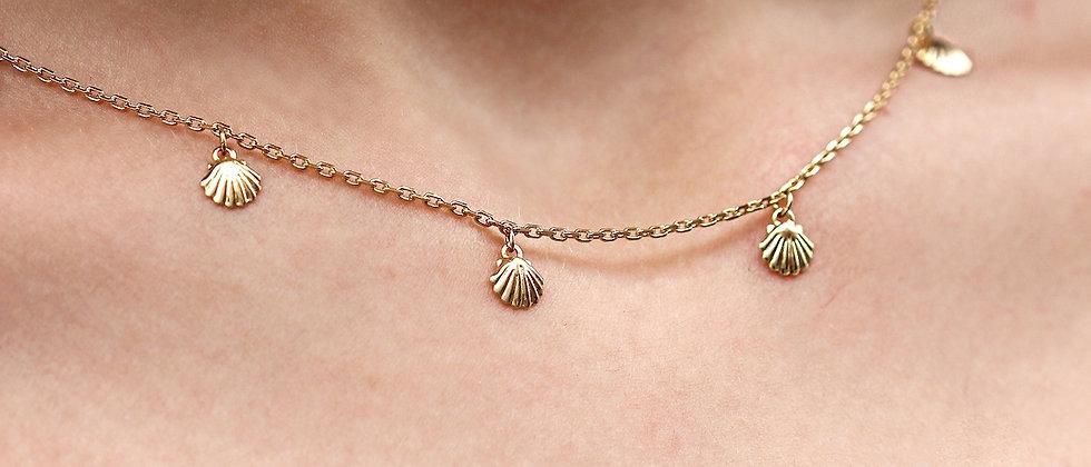 Sea Shell Chain