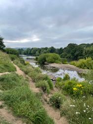 River Walks Corbridge.jpg
