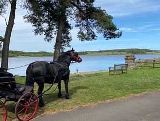 Hallington Reservoir Horse riding.PNG