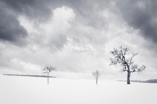 Maincourt neige - 001 - 17 janvier 2021.