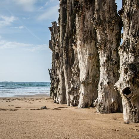 Bretagne- 13 mai 2012-32 (Copier).jpg