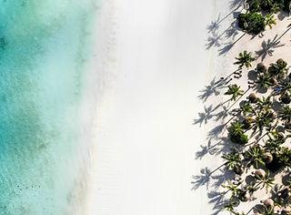 zanzibar zuri aerial beach.jpg