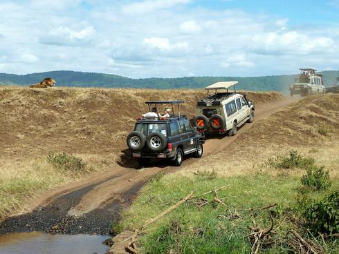safari jeeps-1845202_1920.jpg
