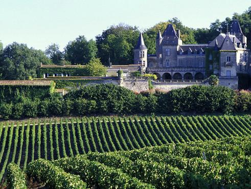 france-bordeaux-veld-kasteel.jpg