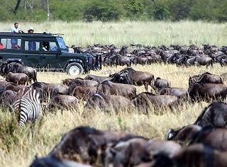 nomad-hoogtepunten-tanzania-kenia.jpg