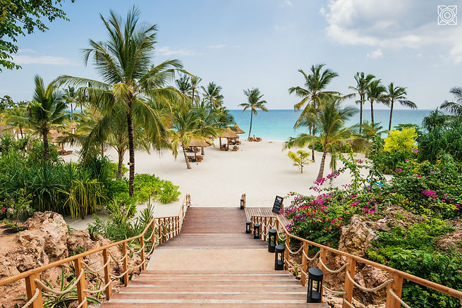 Zanzibar zuri onto beach.jpg
