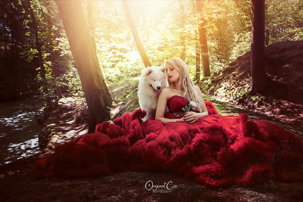 OriginalCin _ Ivy _ Solis Aurora