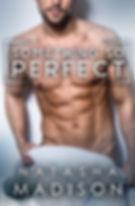 Something So Perfect Ebook Final (1).jpg