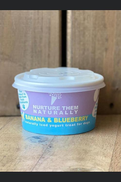 NTN - Banana & Blueberry Ice Cream (8oz)