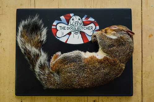 TDB Whole Squirrel In Fur