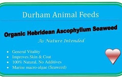DAF Organic Seaweed (250g)