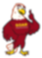 soar_mascot_transparent_bg.png