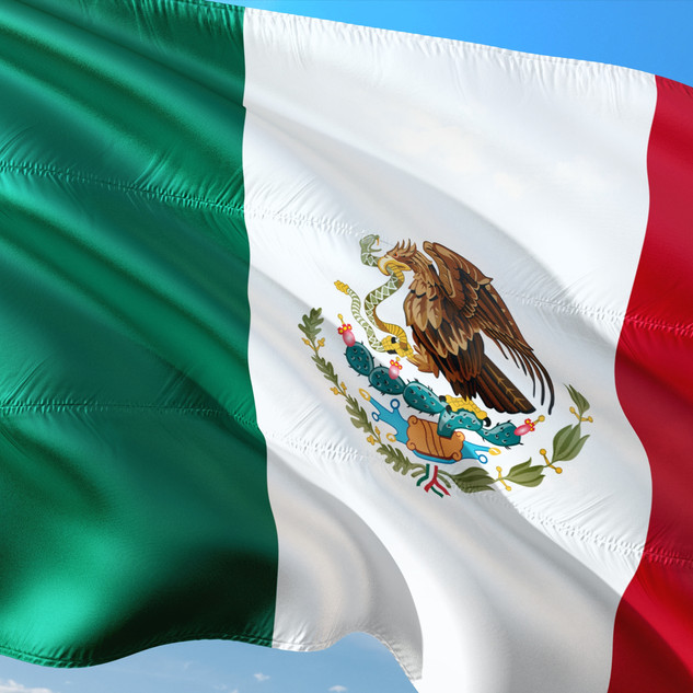 MEXICAN POWER MARKETS