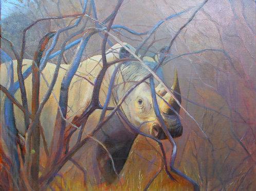 White Rhino  -  SOLD