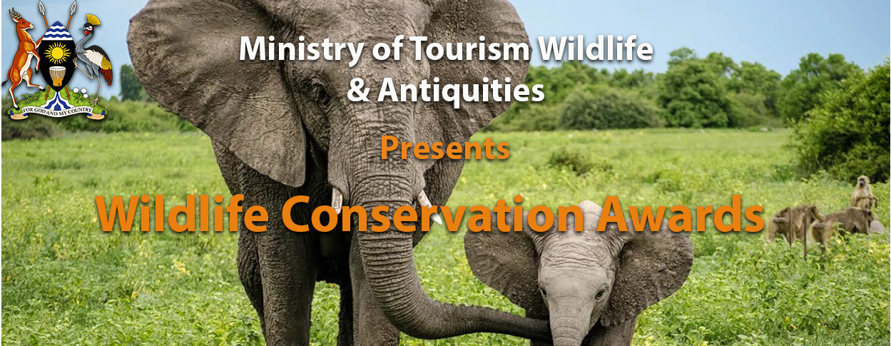 wildlife condervation awards