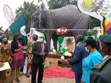 Hon. Tom Butime launches the wildlife street