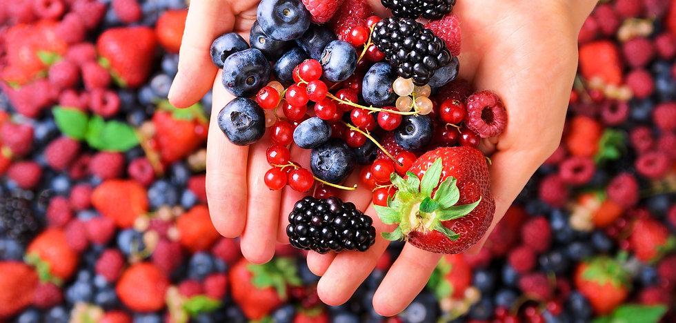 woman-hands-holding-organic-fresh-berrie