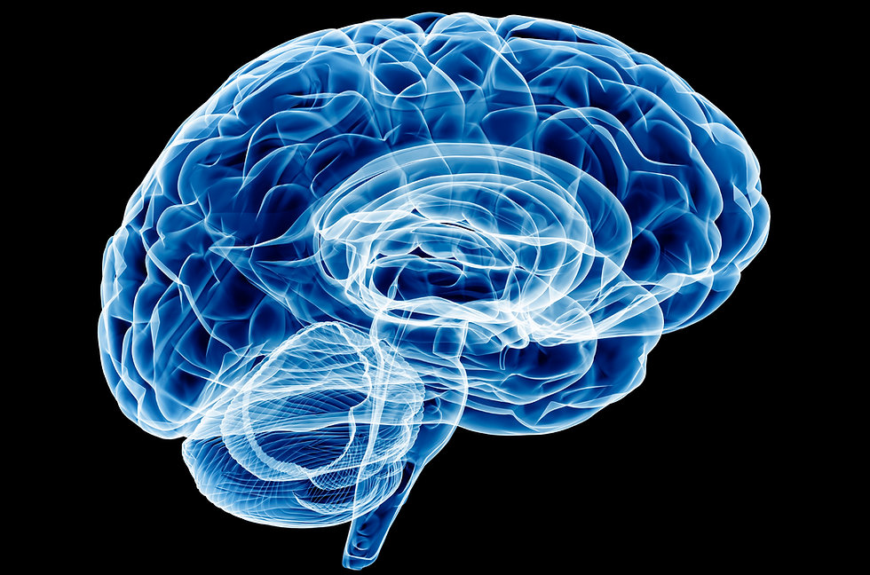 Brain-Photo.jpg