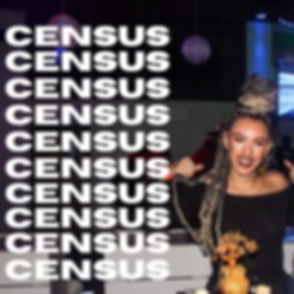 CENSUS24.png