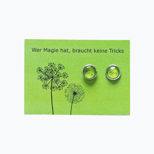 Ohrstecker Pusteblume grün