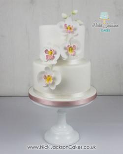 Mum's Moth Orchid Cake