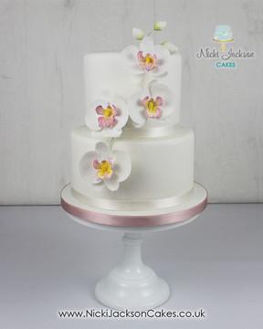 Mum's Moth Orchid Cake.jpg