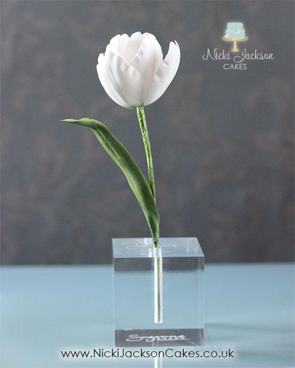 Single White Tulip JPG with Logos