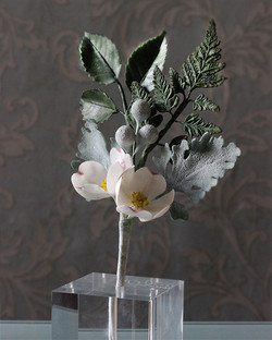 Dogwood Rose, Dusty Miller, Fern & Bruni