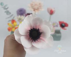Anemone (pink)