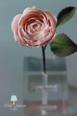 Garden Rose 2 JPG with Logos
