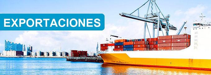 Solicitud de Permiso de Exportación | Decretos Nros. 301/20 y 317/20