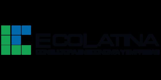 Webinar Ecolatina | Escenario Político y Año Electoral