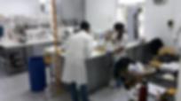 El INV ya donó más de 70 mil litros de alcohol para afrontar la pandemia