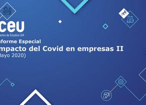 Informe | Impacto del Covid en empresas II