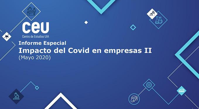Informe   Impacto del Covid en empresas II