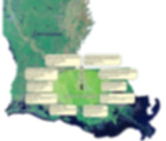 Louisiana Oil Prospects