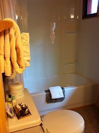 Caboose 4 bathroom.jpeg