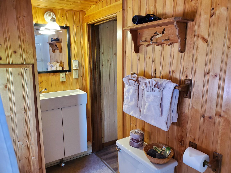 Caboose #4 bathroom