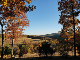 Fall colors on the point.jpg