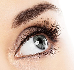 eyelash_big.jpg