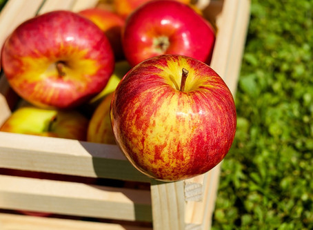 The Ultimate Fall Bounty…Apples!