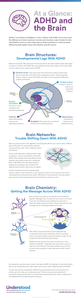 Infographic on ADHD and the Brain