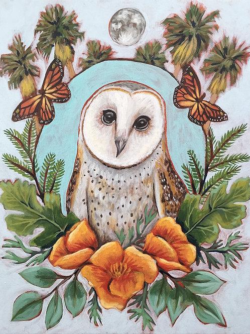 """Barn Owl, Acrylic on Canvas Panel, 11x14"""""""